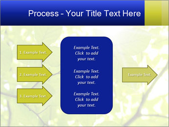 0000081922 PowerPoint Template - Slide 85