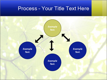 0000081922 PowerPoint Templates - Slide 91