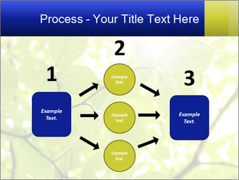 0000081922 PowerPoint Templates - Slide 92