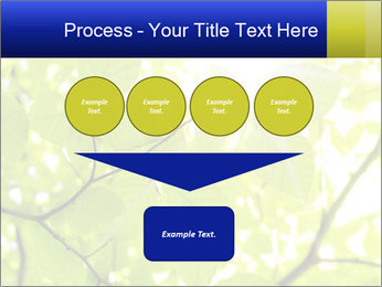 0000081922 PowerPoint Templates - Slide 93