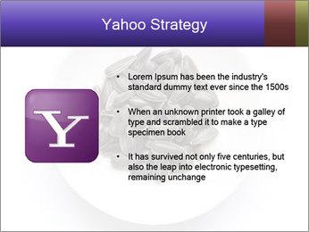 0000081927 PowerPoint Templates - Slide 11