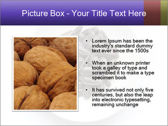 0000081927 PowerPoint Templates - Slide 13