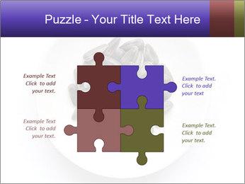 0000081927 PowerPoint Templates - Slide 43
