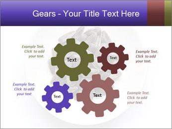 0000081927 PowerPoint Templates - Slide 47