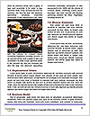 0000081927 Word Templates - Page 4
