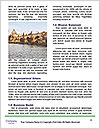 0000081934 Word Template - Page 4