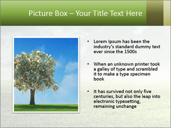0000081940 PowerPoint Template - Slide 13