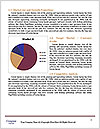 0000081947 Word Template - Page 7