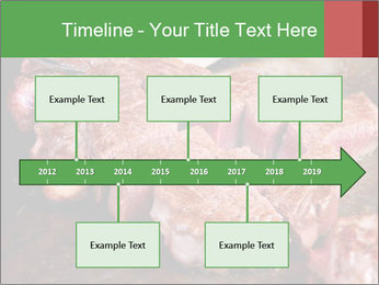 0000081955 PowerPoint Templates - Slide 28