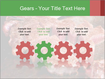 0000081955 PowerPoint Templates - Slide 48
