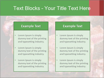 0000081955 PowerPoint Templates - Slide 57