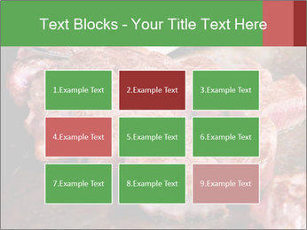 0000081955 PowerPoint Templates - Slide 68