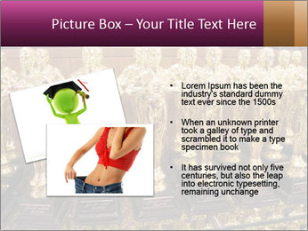 0000081958 PowerPoint Template - Slide 20