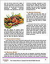 0000081959 Word Templates - Page 4