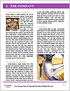 0000081966 Word Template - Page 3