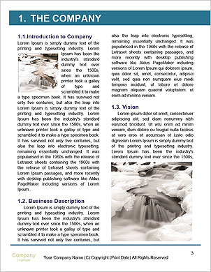 0000081968 Word Template - Page 3