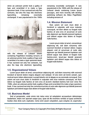 0000081968 Word Template - Page 4