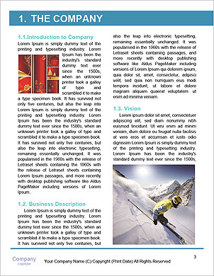 0000081977 Word Template - Page 3