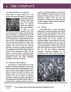 0000081981 Word Template - Page 3