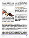 0000081985 Word Templates - Page 4