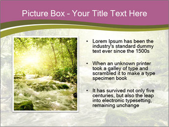 0000081988 PowerPoint Template - Slide 13