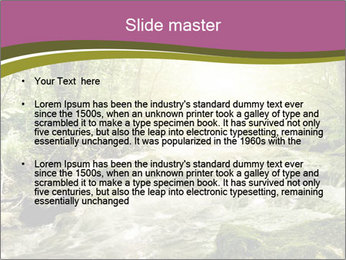 0000081988 PowerPoint Template - Slide 2