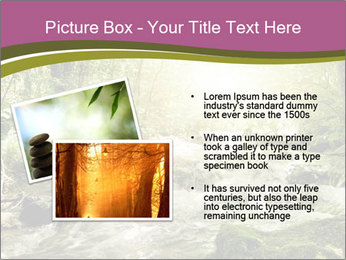 0000081988 PowerPoint Template - Slide 20