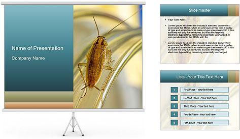 0000081992 PowerPoint Template