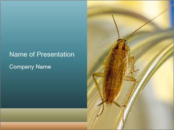 0000081992 PowerPoint Templates - Slide 1