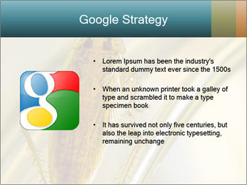 0000081992 PowerPoint Templates - Slide 10