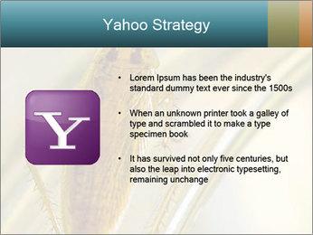 0000081992 PowerPoint Templates - Slide 11