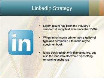 0000081992 PowerPoint Templates - Slide 12