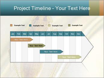0000081992 PowerPoint Templates - Slide 25
