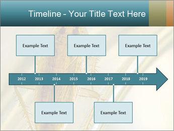 0000081992 PowerPoint Templates - Slide 28