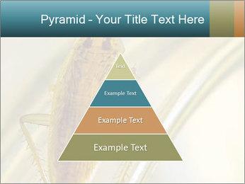 0000081992 PowerPoint Templates - Slide 30