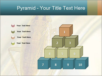 0000081992 PowerPoint Templates - Slide 31