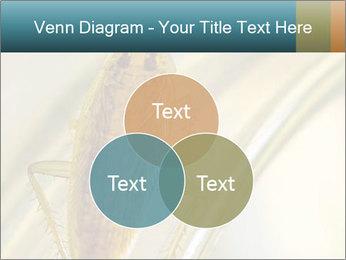 0000081992 PowerPoint Templates - Slide 33