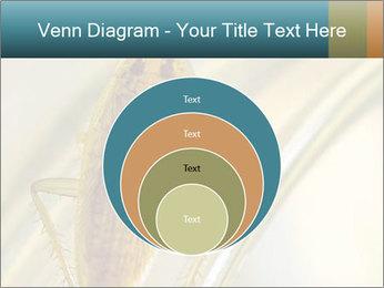 0000081992 PowerPoint Templates - Slide 34