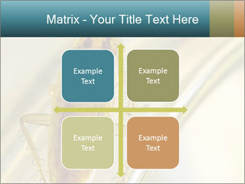 0000081992 PowerPoint Templates - Slide 37