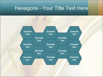 0000081992 PowerPoint Templates - Slide 44