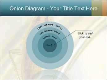 0000081992 PowerPoint Templates - Slide 61