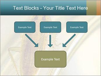 0000081992 PowerPoint Templates - Slide 70