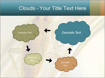 0000081992 PowerPoint Templates - Slide 72