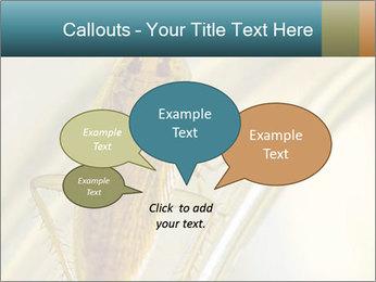 0000081992 PowerPoint Templates - Slide 73