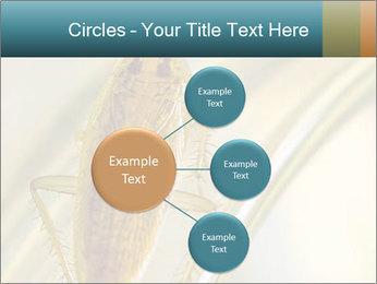 0000081992 PowerPoint Templates - Slide 79