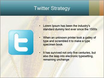 0000081992 PowerPoint Templates - Slide 9