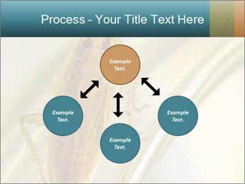 0000081992 PowerPoint Templates - Slide 91