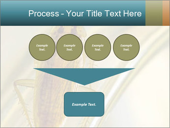 0000081992 PowerPoint Templates - Slide 93