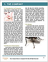 0000081992 Word Template - Page 3