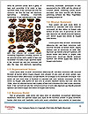 0000082000 Word Templates - Page 4
